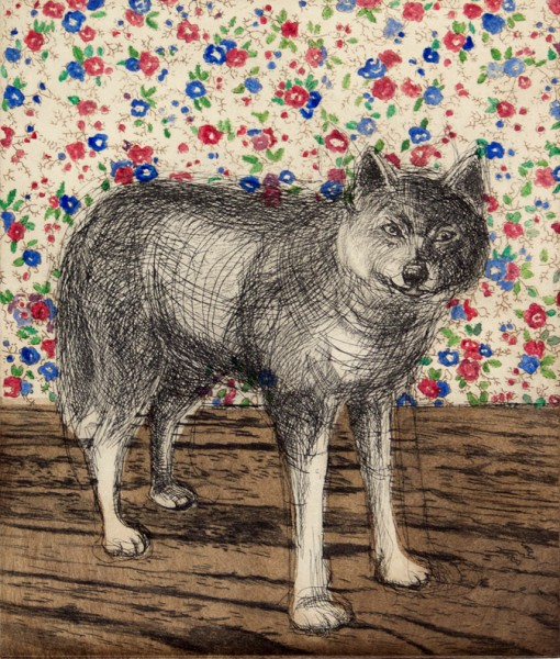 domesticatedwolf
